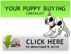 Your Puppy Buying Checklist