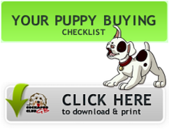 Puppy buying checklist